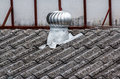Air vent on the roof Royalty Free Stock Photo