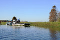The airboat an experience with about marshes of florida is to be driven Stock Photography