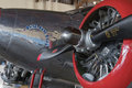 Airplane engine close up and nose art Royalty Free Stock Photo