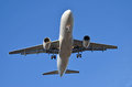 Airplane landing commericial airliner to airport Royalty Free Stock Images