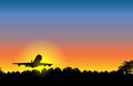 Airplane Sunset on City Royalty Free Stock Photography