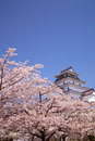 Aizuwakamatsu Castle and cherry blossom Royalty Free Stock Photos