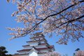Aizuwakamatsu Castle and cherry blossom Stock Photo