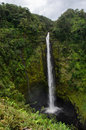 Akaka falls Royalty Free Stock Images