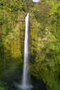 Akaka falls Royalty Free Stock Photography
