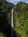 Akaka falls spectacular with rainbow feet high waterfall north of hilo on big island hawaii Royalty Free Stock Photo
