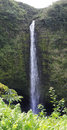 Akaka waterfalls big island hawaii panoramic view of the falls Royalty Free Stock Images