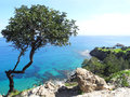Akamas peninsula cyprus the view from the in the mediterranean sea Stock Photography