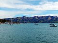 Akaroa Bay, New Zealand Royalty Free Stock Photo