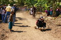 Akka hill tribe racing 3 wheels wooden cart Stock Photo