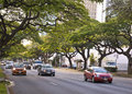 Ala moana boulevard Royalty Free Stock Photo
