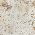 Alabaster texture natural stone surface textured Stock Images