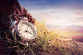Alarm clock on grass at sunset or sunrise/ time concept Royalty Free Stock Photo