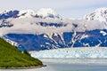 Alaska Haenke Island Hubbard Glacier Royalty Free Stock Photo