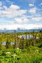 Alaska - Kenai Peninsula Lakes and Mountians Royalty Free Stock Photo
