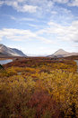 Alaska range in denali fall foliage along the highway Stock Image