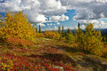 Alaska's Wilderness in Fall Stock Photos