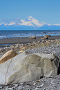 Alaskan beach a rocky with mt iliamna in the background Royalty Free Stock Image