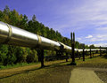 Alaskan oil pipeline a view of the going underground Stock Image