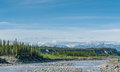 Alaskan river wide white mountains and trees Royalty Free Stock Photo