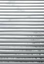 Alberi veduti attraverso i ciechi metallici semi-closed Fotografia Stock Libera da Diritti