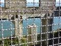 Alcatraz, San Francisco - Ruins of an old Building Through a Fence