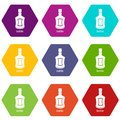 Alcohol bottle icons set 9 vector Royalty Free Stock Photo