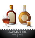 Alcoholic drinks brandy and whisky Stock Photography