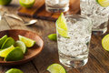 Alcoholic gin and tonic with a lime garnish Royalty Free Stock Image
