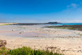 Alderney Beach at Low Tide Royalty Free Stock Photo