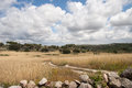 Alentejo landscape beautiful clouds over the dry of the in portugal Royalty Free Stock Photos