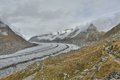 Aletsch glacier landscape shot of the in switzerland with a hiking trail Royalty Free Stock Photo