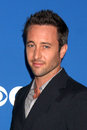 Alex O'Loughlin Stock Photography
