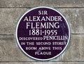 Alexander fleming plaque to commemorate Royalty Free Stock Image