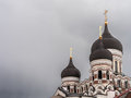 Alexander Nevski cathedral Royalty Free Stock Photo