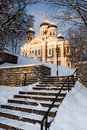 Alexander Nevsky Cathedral. Tallinn Royalty Free Stock Photos