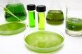 Algae biofuel Royalty Free Stock Images