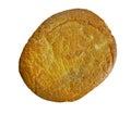 Algerian wheat bread Royalty Free Stock Photo