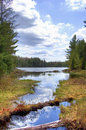 Algonquin Lake View Royalty Free Stock Image