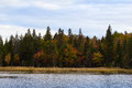 Algonquin park in autumnal setting Stock Images