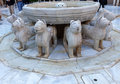 Alhambra moorish courtyard lions fountain statue granada spain patterns designs andalusia Stock Photos