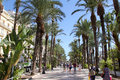 Alicante Royalty Free Stock Photo