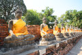 Aligned buddha statues Royalty Free Stock Photo