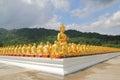 Aligned statues of Buddha Royalty Free Stock Photo