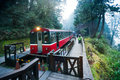 Alishan forest train railway Royalty Free Stock Photo