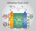 The alkaline fuel cell. Health care education infographic. Vector design.