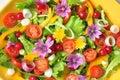 Alkalische kleurrijke salade met bloemen fruit en groenten Stock Fotografie