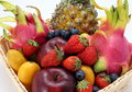 All Kinds Of Fruit