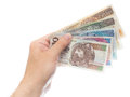 All zloty banknotes hand holding the isolated on white Royalty Free Stock Photography