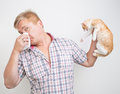 Allergic to animals man holding a cat is Stock Images
